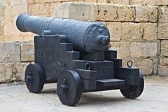 Il vecchio cannone Fotografia Stock