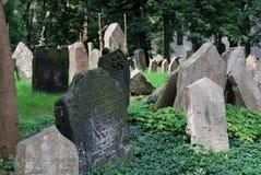 Il vecchio cimitero ebreo Fotografia Stock