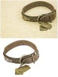 Il vecchio collare di cuoio dell'animale domestico del cane ha isolato il collage del fondo Immagini Stock