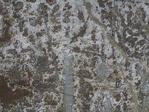 Il vecchio colore multi di pelatura dipinto ha screpolato la facciata del gesso immagini stock libere da diritti