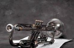 Il vecchio corno Fotografie Stock