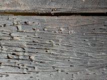 Il vecchio legno Fotografie Stock