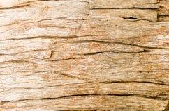 Il vecchio legno ha crepe Fotografia Stock