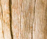Il vecchio legno ha crepe Immagine Stock Libera da Diritti