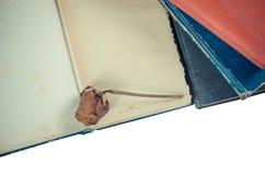 Il vecchio libro ed asciuga di rosa Immagini Stock