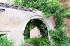 Il vecchio mattone ha screpolato la parete con il grandi arco e pianta immagine stock