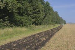 Il vecchio trattore ara un campo dopo la raccolta del grano 5 Fotografie Stock