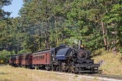 Il vecchio treno a vapore nella foresta immagini stock