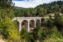 Il vecchio viadotto è nelle foreste svizzere Fotografia Stock