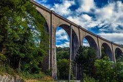 Il vecchio viadotto è nelle foreste svizzere Fotografia Stock Libera da Diritti