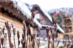 Il vecchio villaggio di Shirakawa-va Immagini Stock Libere da Diritti