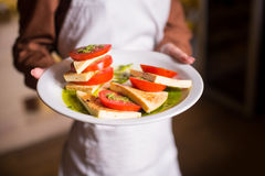 Il vegetariano pranza insalata Caprese del pomodoro fotografia stock libera da diritti