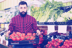 Il venditore dell'uomo che mostra i pomodori freschi nelle verdure compera Immagini Stock Libere da Diritti