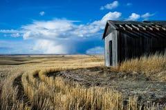 Il vento ha spazzato le praterie di Alberta e le costruzioni abbandonate fotografie stock libere da diritti