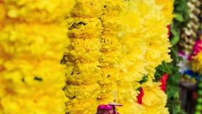 Il vento scuote le ghirlande bianche e gialle del fiore video d archivio