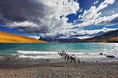 Il vento tempestoso soffia le onde di livello Fotografie Stock Libere da Diritti