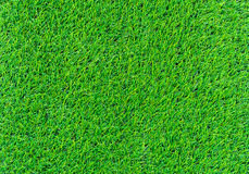 il verde di erba 3d ha reso la struttura Immagine Stock Libera da Diritti
