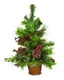 Il verde ha decorato l'albero di Natale su fondo bianco Fotografia Stock