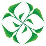 Il verde lascia il marchio Fotografia Stock
