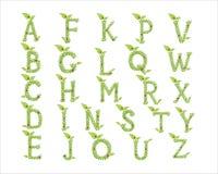 Il verde lascia la fonte tipografica Fotografia Stock Libera da Diritti