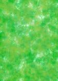 Il verde lascia la priorità bassa Fotografie Stock