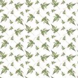 Il verde scolpito modello che sbiadisce le foglie cadute Immagini Stock
