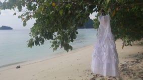 il vestito da sposa bianco appende sull'albero verde archivi video