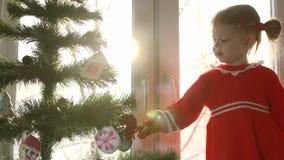 Il vestito dalla bambina in rosso che decora l'albero di Natale con un pan di zenzero archivi video
