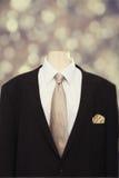Il vestito & il legame dell'uomo Immagini Stock Libere da Diritti
