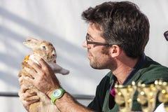 Il veterinario dell'uomo esamina una tenuta del coniglietto in sue mani Fotografia Stock Libera da Diritti