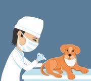 Il veterinario fa l'iniezione illustrazione vettoriale