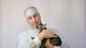 Il veterinario fa l'ispezione di un gattino Sta andando vaccinarlo stock footage