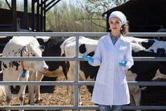Il veterinario femminile interessato si è vestito nella condizione delle camice Fotografia Stock