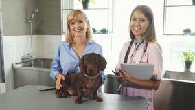 Il veterinario, il proprietario ed il tasso-cane tedesco sono nell'ambulatorio medico archivi video