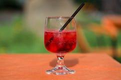 Il vetro di spritz Immagine Stock