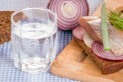 Il vetro ed il pezzo di aringa salata sul pane di segale Immagini Stock Libere da Diritti
