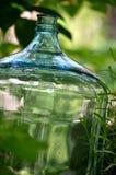 Il vetro imbottiglia il giardino fotografia stock libera da diritti