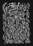 Il vettore disegnato a mano ha allineato le piante floreali dell'interno allinea le icone insieme e gli elementi di progettazione illustrazione di stock