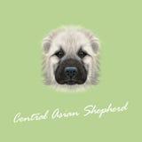 Il vettore ha illustrato il ritratto del pastore centroasiatico Dog Fotografia Stock Libera da Diritti
