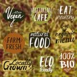 Il vettore ha messo con le etichette sane, di eco e dell'alimento biologico Royalty Illustrazione gratis