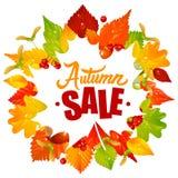 Il vettore lascia la struttura con Autumn Sale Text Fotografia Stock