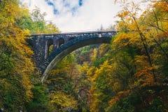Il viadotto famoso al canyon della gola di Vintgar, sanguinato, Triglav, Slovenia, Europa Immagine Stock