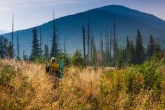 Il viaggiatore con zaino e sacco a pelo sta camminando attraverso erba alta nelle montagne di autunno Fotografie Stock Libere da Diritti