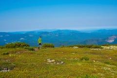 Il viaggiatore dell'adolescente sta camminando lungo il prato alpino Immagini Stock
