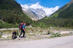 Il viaggiatore dell'uomo con il grande cane cammina sulla strada in una gola della montagna Fotografie Stock Libere da Diritti
