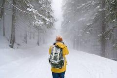 Il viaggiatore nella foresta di inverno fotografie stock