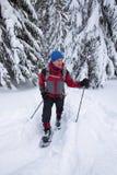 Il viaggiatore va in racchette da neve - avventuri nel selvaggio Fotografie Stock Libere da Diritti