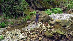 Il viaggiatore va su un fiume della montagna dalla pietra alla pietra in foresta tropicale verde archivi video