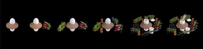 Il viaggio di un uovo Fotografia Stock
