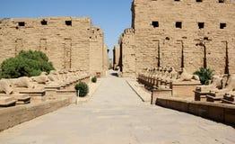 Il viale degli Sphinxes. Fotografie Stock
